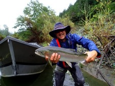 A larger than average Trinity Steelhead